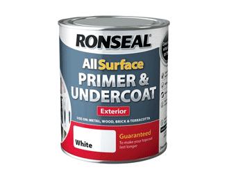 Primer & Undercoat Paint